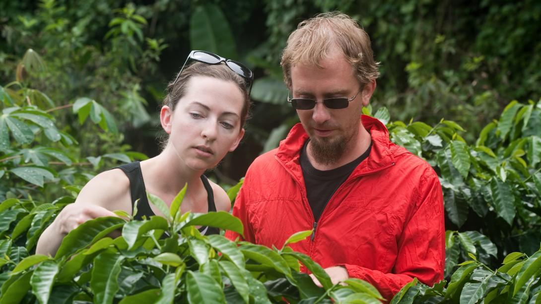 Les participants apprennent la culture du cacao pendant leur voyage de sensibilisation à la consommation éthique au Costa Rica.